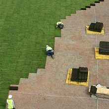 Turfing a roof