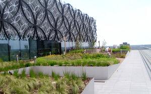 Birmingham Library LOB DSCI0010c