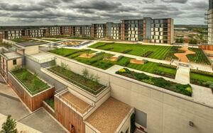 Sainsburys Rooftop Garden HD Rpb