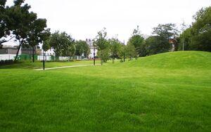 Frank Banfield Park IMGP1378