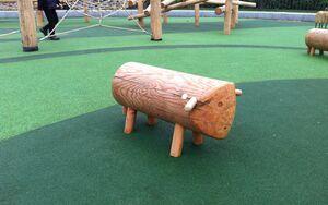 Jubilee Playground photo1