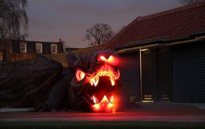 Magic Garden Lights Dragon 2 min
