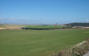Peacehaven Turf 002