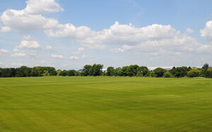QEOP Football Pitches Pics 2 066