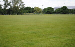 QEOP Football Pitches Pics 2 073