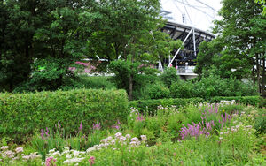 Olympic Park Read Photography DSC2718