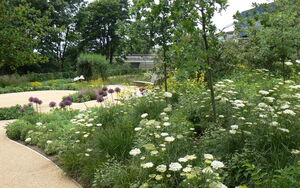 World Garden P1010711
