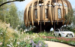Hampton Court Quiet Treehouse 1