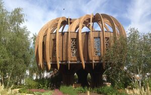 Hampton Court Quiet Treehouse 2014 07 04 10 24 54