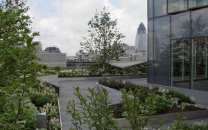 Ropemaker Roof Terrace Townshend Landscape Architects 066