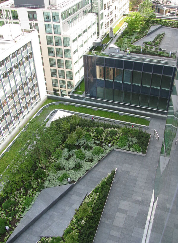 Ropemaker Roof Terrace Townshend Landscape Architects 113