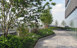 Ropemaker roof terrace 007 Townshend Landscape Architects