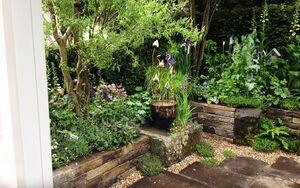 28 Chelsea Flower Show 2016 Garden Bed planting