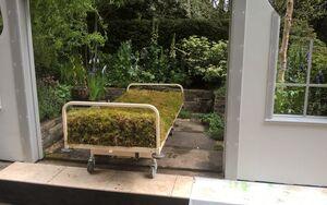 The Garden Bed 071